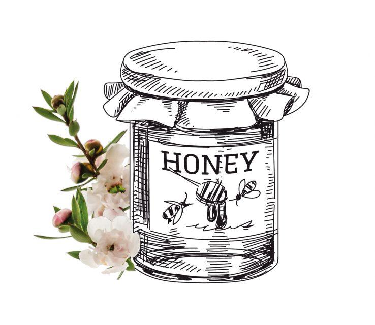 Honigglas mit Manukablüten