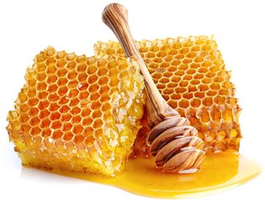 Zwei Honigwaben an die ein Honiglöffel lehnt