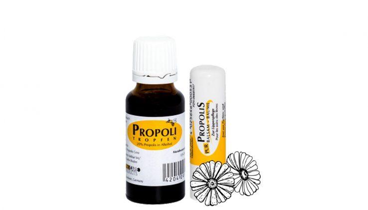 Produkte mit Propolis: Tropfen und Lippenpflegestift
