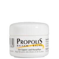 Propolis Lippen- und Hautpflege im Tiegel